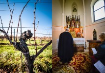 Burgenland, wine country