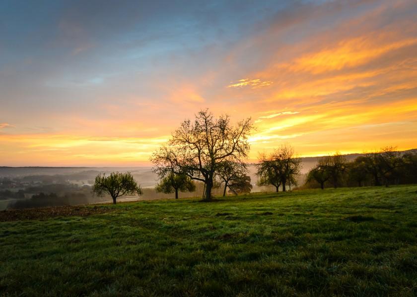 Burgenland, sun set